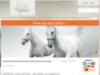 Materiel équitation - Sellerie La Cabriole