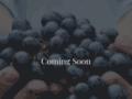 Détails : 514-Renover, rénovation résidentielle et commerciale à Montréal, condo