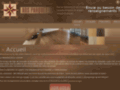Ads-parquets - Pose et rénovation de parquet