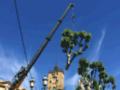 Détails : Un Week-end à Aix-en-Provence
