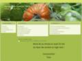 Détails : Amapp du canton vert