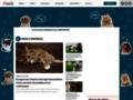 animal-services.com, les fichiers conseils sélectionné par laselec.net