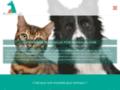 mutuelle animal sur animauxmutuelle.fr