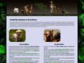 Annuaire Animaux et Nature