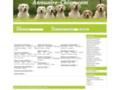 Détails : Référencement canin gratuit sur Annuaire-Chien.com
