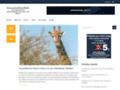 Détails : Annuairesitesweb
