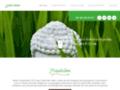 Paysagiste spécialiste en élagage d'arbre à Haguenau - ANTIK JARDINS