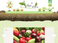 """Arôm'éthic : Maraicher Biologique en <b>Bretagne</b> """"Amis jardiniers, préparez vos futures récoltes ! Découvrez de nombreux plants issus de l'agriculture biologique, cultivés dans le respect de leur rythme de croissance..."""" Plants maraîchers - Plantes aromatiques - Fleurs - Fruits et Légume"""