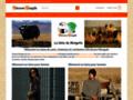 Détails : Chaussons bébé et adultes artisans mongols