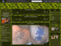 Denis tatouages et JP piercings - Tatoueur et pierceur à Chjateauroux (36)