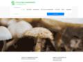 Apprendre les champignons Atlas des Champignons