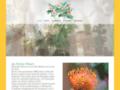 Détails : fleuriste corse