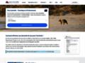Détails : Obtenir votre visa australien en ligne