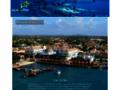 auxBulles, le site de la plongée et de la vie marine