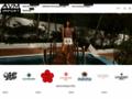 AVM Import