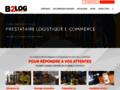 Détails :  B2LOG: Prestataire e-logistique