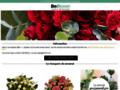 acheter fleurs et promotions fleurs