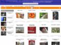 Site #116 : Belpress - Banque d'images en ligne