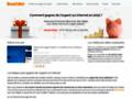 BenefsNet : Gagner de l'argent sur Internet