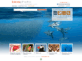 Site #146 : Agence Bios Photo