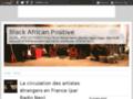 blackafricanpositive.over-blog.com