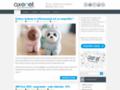 Agence web blog
