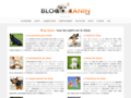 Détails : Informations utiles sur le chien
