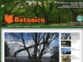 Détails : Botanica Service D'Arbres