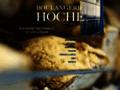 Détails : Boulangerie Patisserie Hoche
