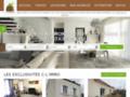 Capture du site http://www.c-limmo.fr