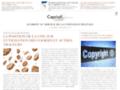 fournisseur acces internet sur www.caprioli-avocats.com
