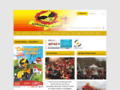 www.carnaval-albi.com/