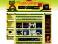 Détails : Guide des jeux d'argent gratuits du net