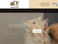 Détails : CATS COIN DU MONDE