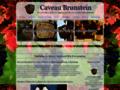 Le Caveau Brunstein propose chambre b&b gite