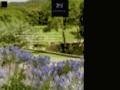 Capture du site http://www.chateau-fontainebleau.fr/