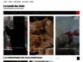animalerie ligne sur chats-monde.fr