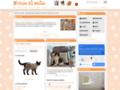 ChatsDeRace.com: Petites annonces