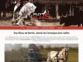 Détails : Cheval de Camargue pour Saillie Ruy Blass de Bernis
