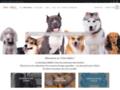 Détails : Chien Addict, vente de jouets et accessoires pour chiens
