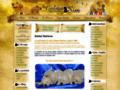 Voir la fiche détaillée : Golden Retrievers of Sim: vente et pension pour chiens