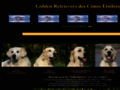 Elevage de golden retrievers des Cimes Etoilees