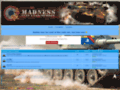 world of tank sur clanmadness.forumgratuit.org