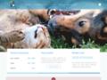 Détails : Clinique Vétérinaire de Mascouche