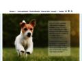 Club canin de dressage de chien à Bordeaux