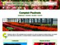 Graines et bulbes de fleurs