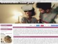 Détails : construis ton jeu.com, jeu virtuel online de gestion