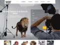 Détails : Location chien et chat pour le cinéma