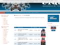 Détails : Vente on line - quads origine Chine