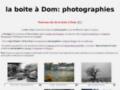 Site #718 : La boîte à Dom